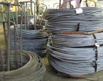 Coil stock raw material